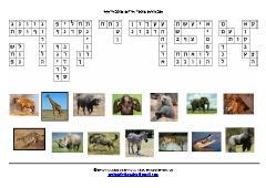 אפריקה - תפזורת בעלי חיים